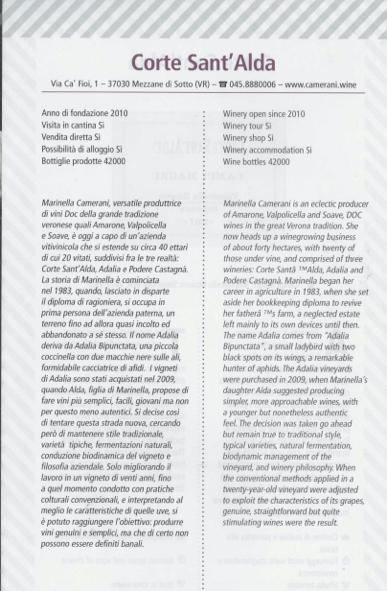 guidaCSA-top-100-vini-verona